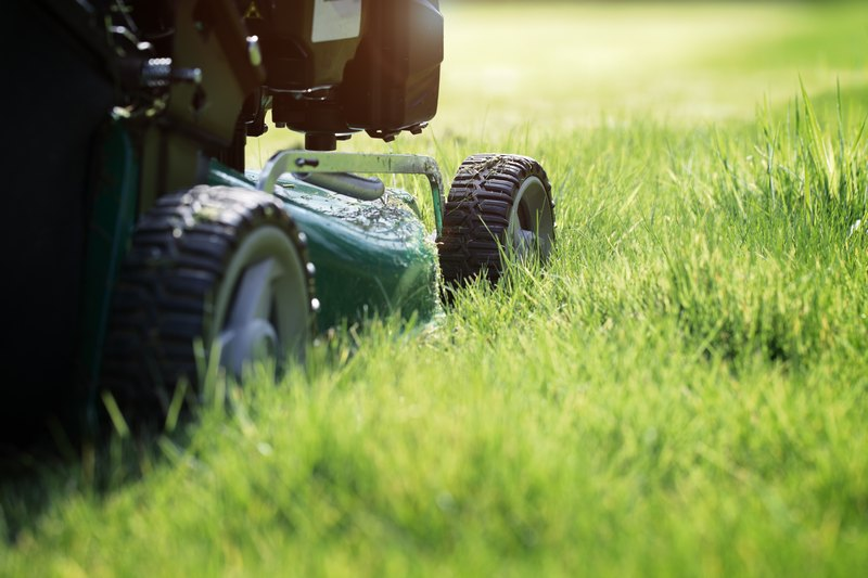 Lawn-Maintenance-Kent-WA