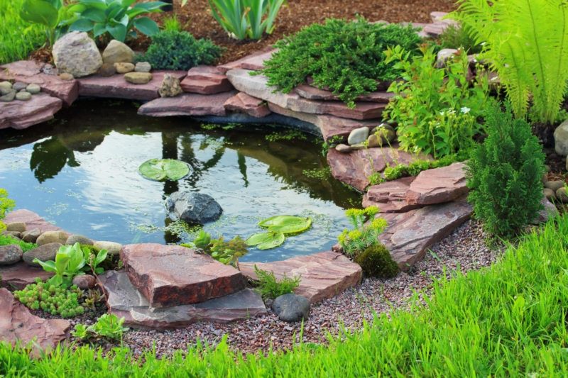 Pond-and-Waterfall-Installation-Browns-Point-WA